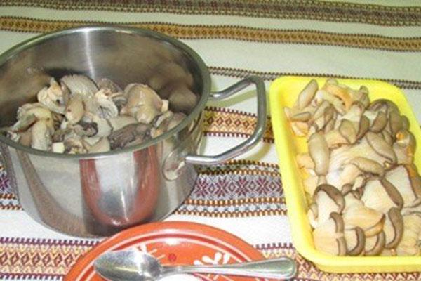 kartofelnie-zrazi-s-gribami3