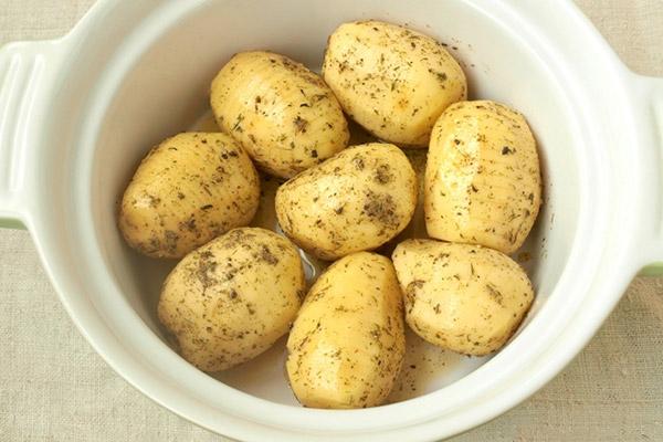 kartofel3